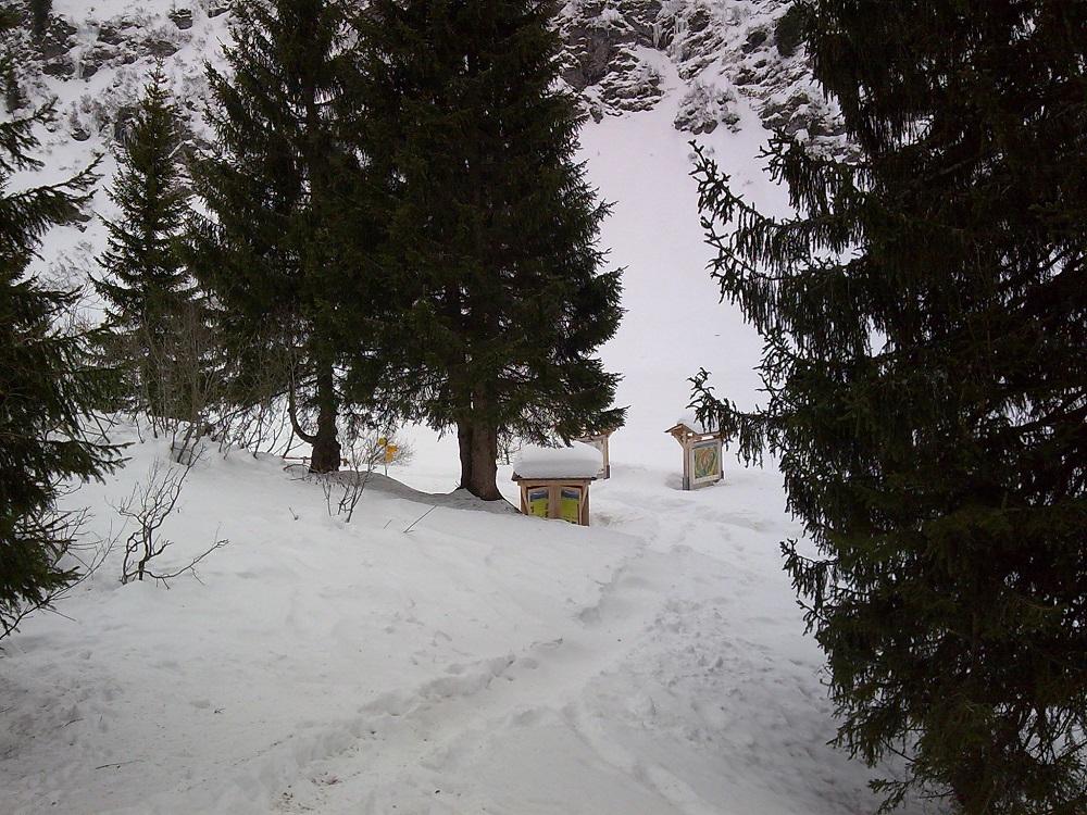 2008-01-04-11
